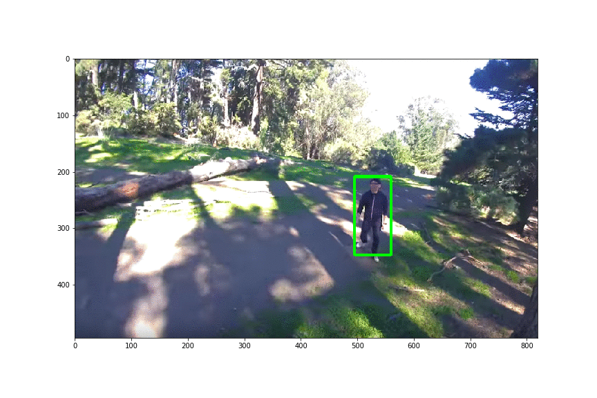 person detection from drone footage using deep learning