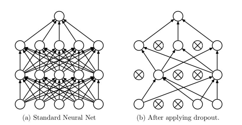 Standard Neural net vs Neural Net after applying dropout